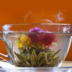 Ceaiurile care infloresc in cana ... un spectacol pentru simturi!